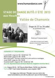 affiche A4 stage chamonix 2013